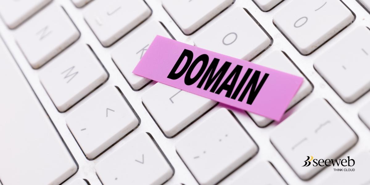 dominio-icann