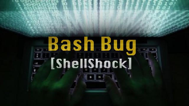 Bash Bug