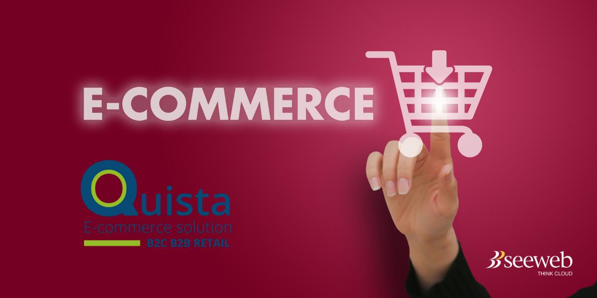 quista-ecommerce-b2b-b2c
