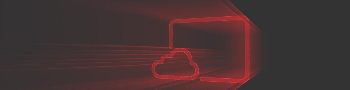 virtual-desktop-netter